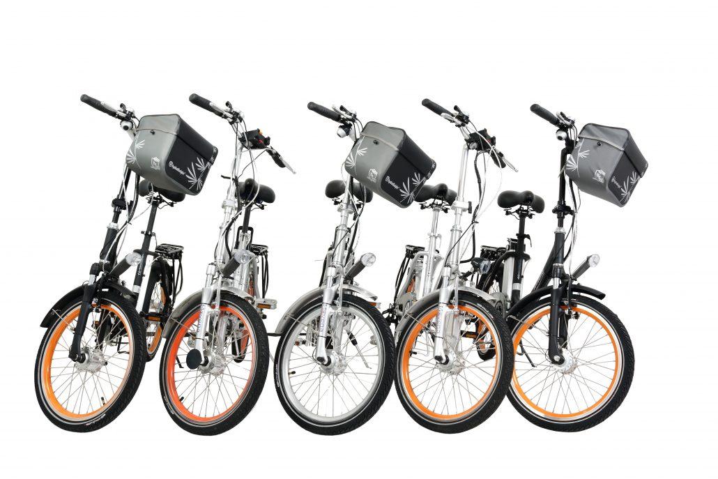 E-Bike 20 Zoll Faltrad AFH20